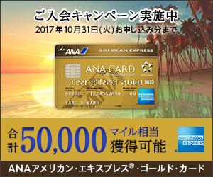 300x250_gold